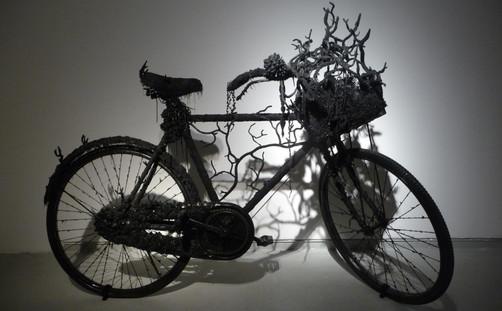 art-silicone-musee-telaviv-velo.JPG