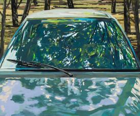 דוד גרשטיין- סדרת המכוניות ....jpg