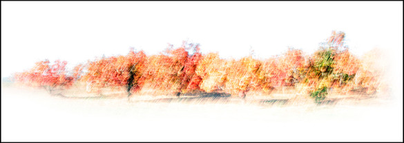 Untitled-170x60.jpg