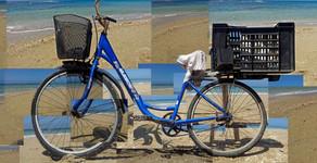 010 blue bike yosi.jpg