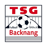 TSG_Logo_whitespace.png