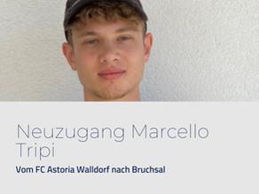 Pressemitteilung: Neuzugang Marcello Tripi
