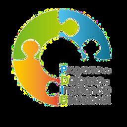 Programa de Defensa e Incidencia Binacional, Borderlands Immigration Council