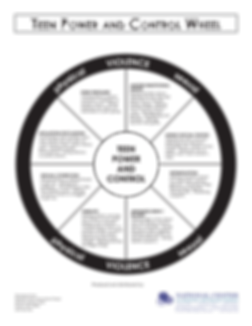 Teen Power and Control Wheel
