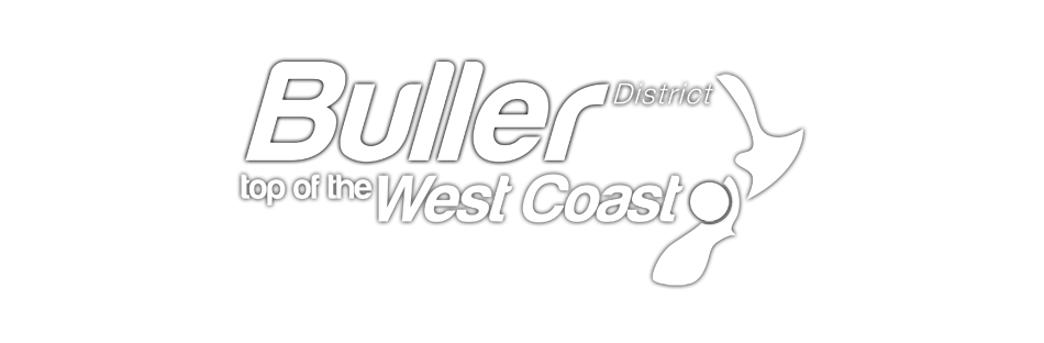 Buller District Council