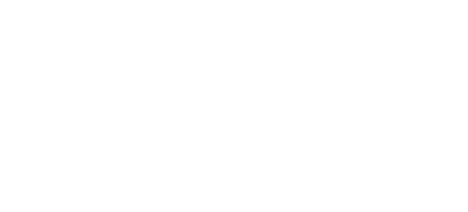 Local Government New Zealand