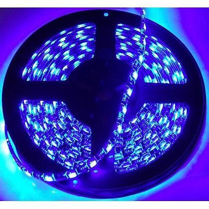 RS-5050-5MB 16ft (5M) 5050 LED Strip (Blue)