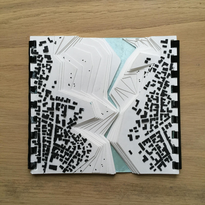 IMG_2795 - Copie