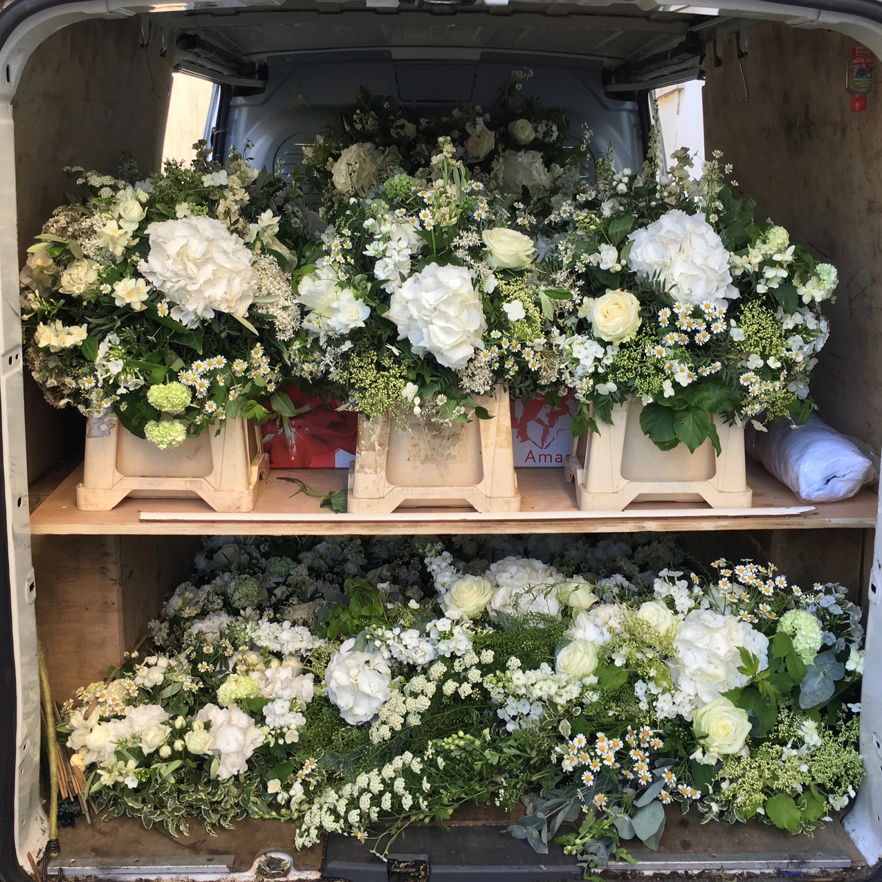 Two levels of flowers in the back of the Blue Geranium van
