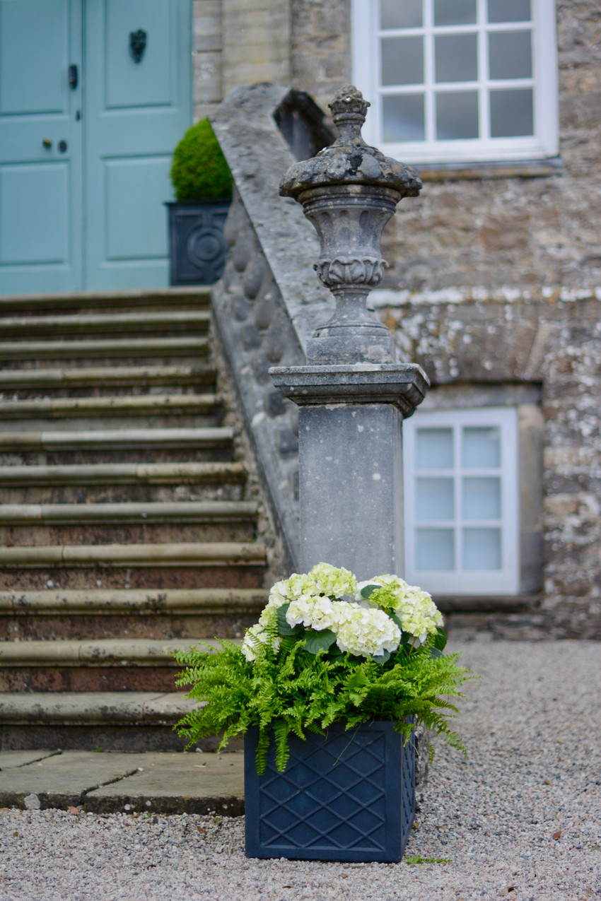 To greet guests upon arrival at the foot of the house entrance, a pair of matching classical containers with white hydrangea plants with lush green Boston ferns