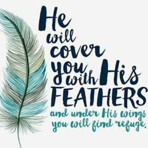Prayer & Color Journal - In the Shelter of His Wings