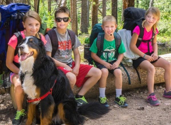 Dogs & Wilderness
