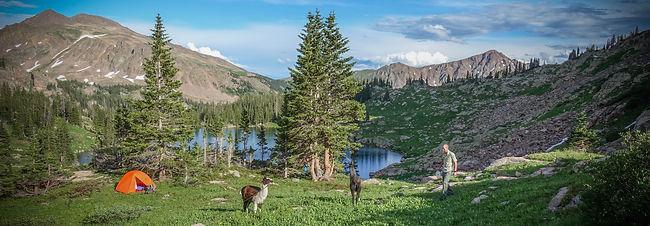 llama trip camping2.jpg