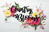Country Blooms Florist Logo
