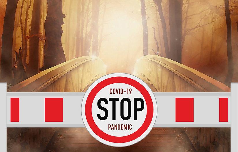 covid roadblock.jpg