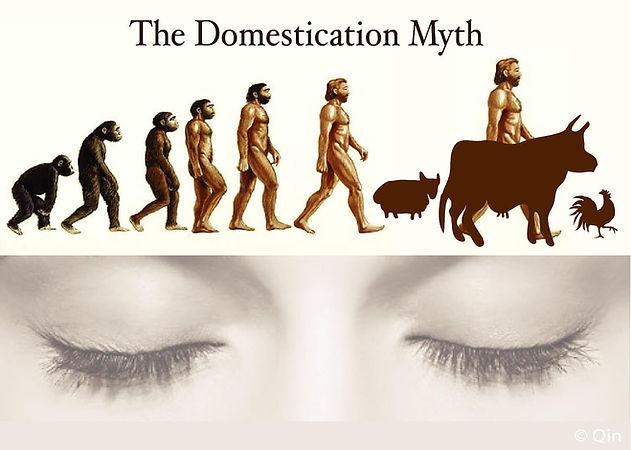 Domestication Myth.jpg