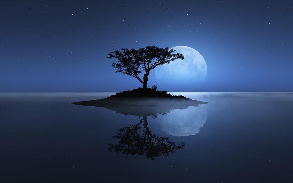 tree-sea-moon-reflection-island-stars-ni