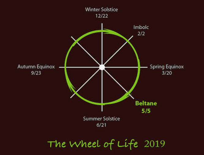 The Wheel of life 2019.jpg