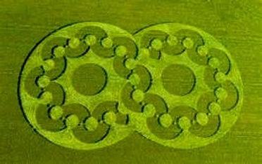 Crop Circle-twin circles copy.jpg