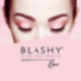 Blashy_SocialMedia_Logos_Foto-Bar.png