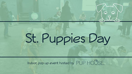 St. Puppies Day FB Event Banner.jpg