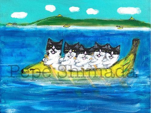 """Banana Boat Hachiware Cat Team"""