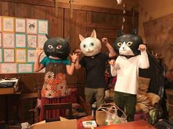 京都猫たち
