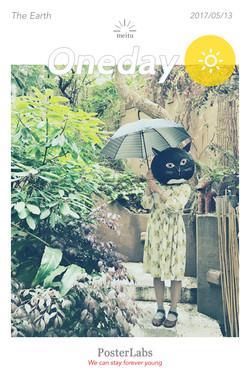 猫とワンピと、アンブレラ