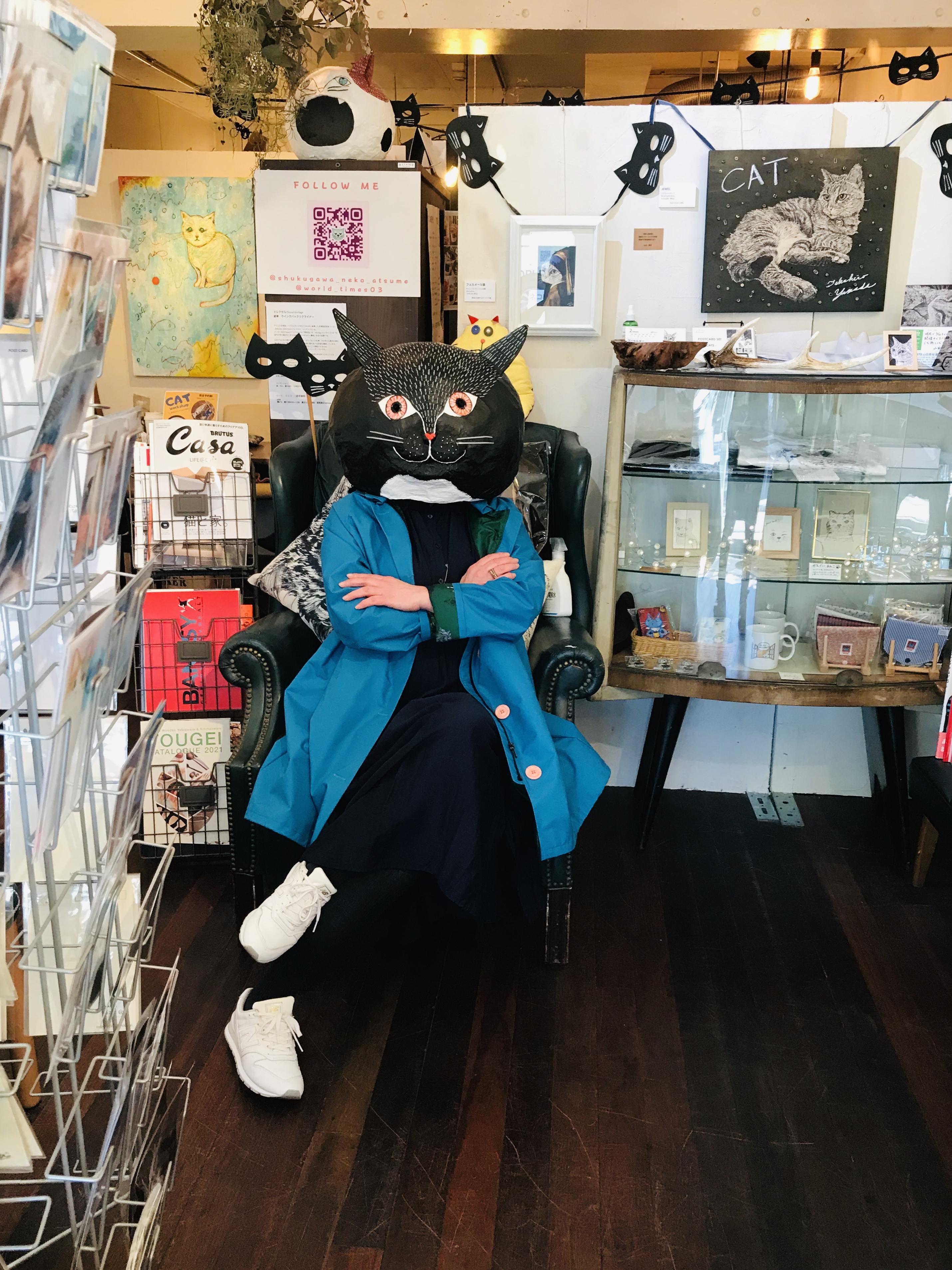 青いコート猫