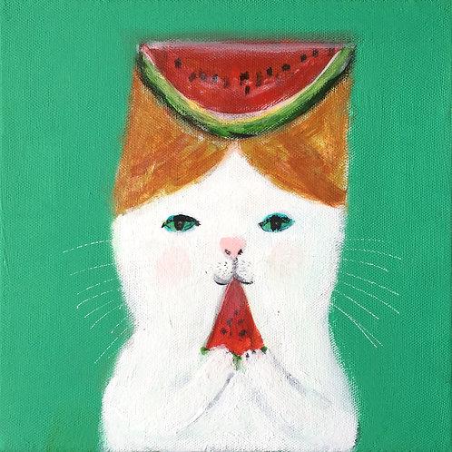 """Watermelon Cat eating Watermelon"""