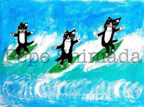 """Hatiware Cats Surfing"" 「ハチワレ猫たちのサーフィン」"