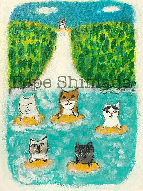 """Cat's waterfall slide"" 「猫たちの滝滑り」"