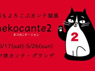 #3・nekocante2