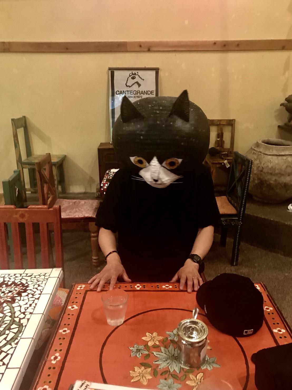 猫アーティスト