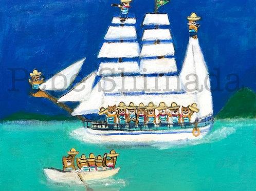 """""""Cats of Sailing Ship"""""""