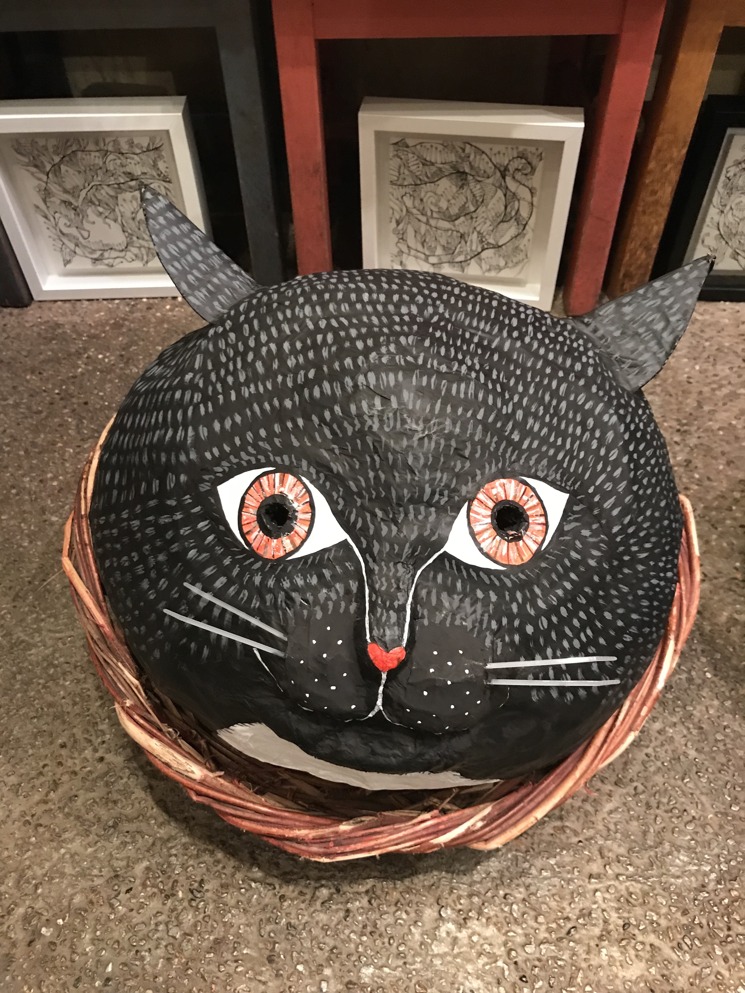 黒猫の黒マメ