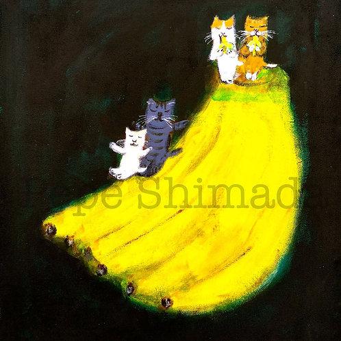 Cats dream of bananas「猫はバナナの夢を見る」