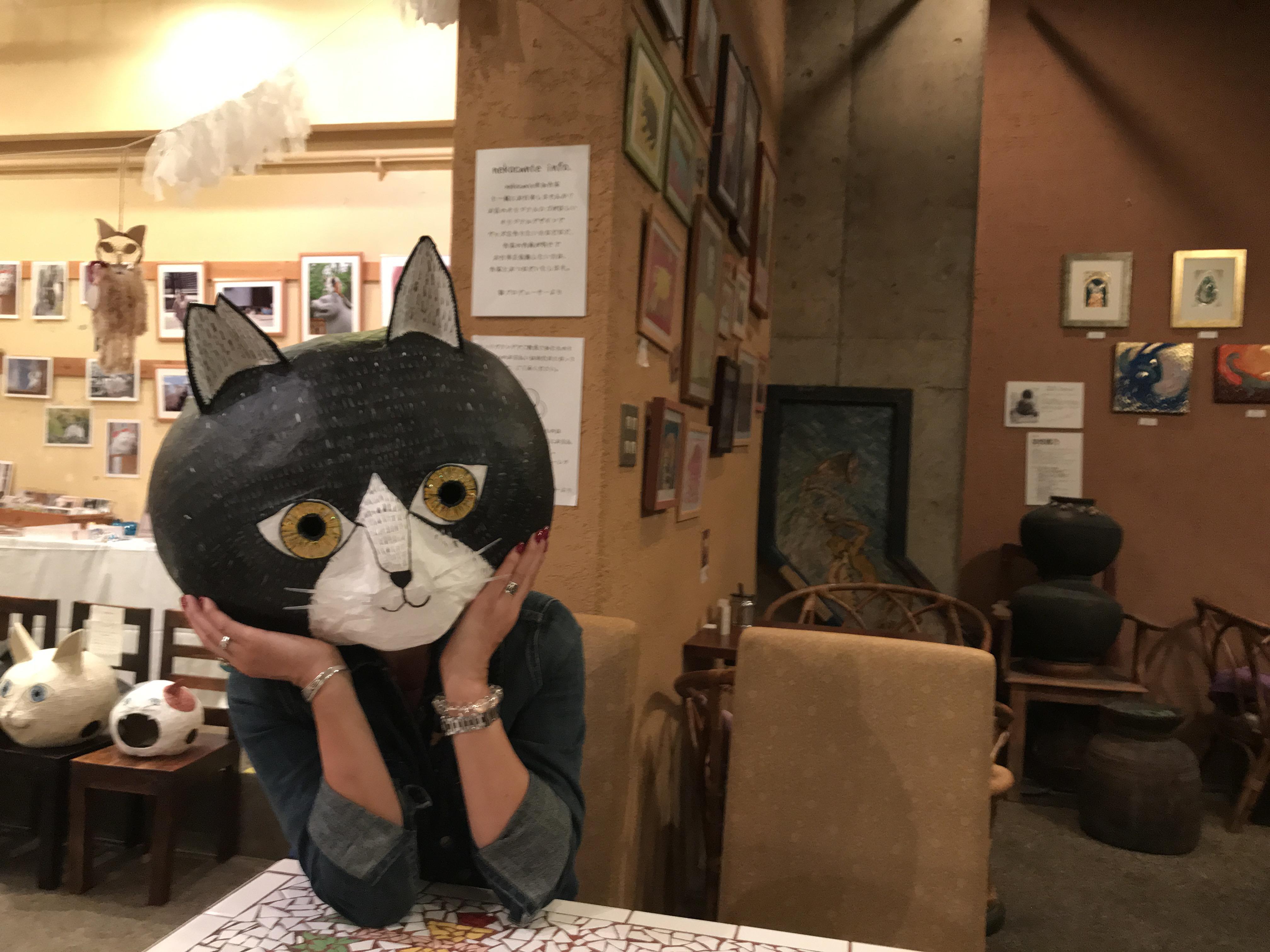 アナウンサー猫さん