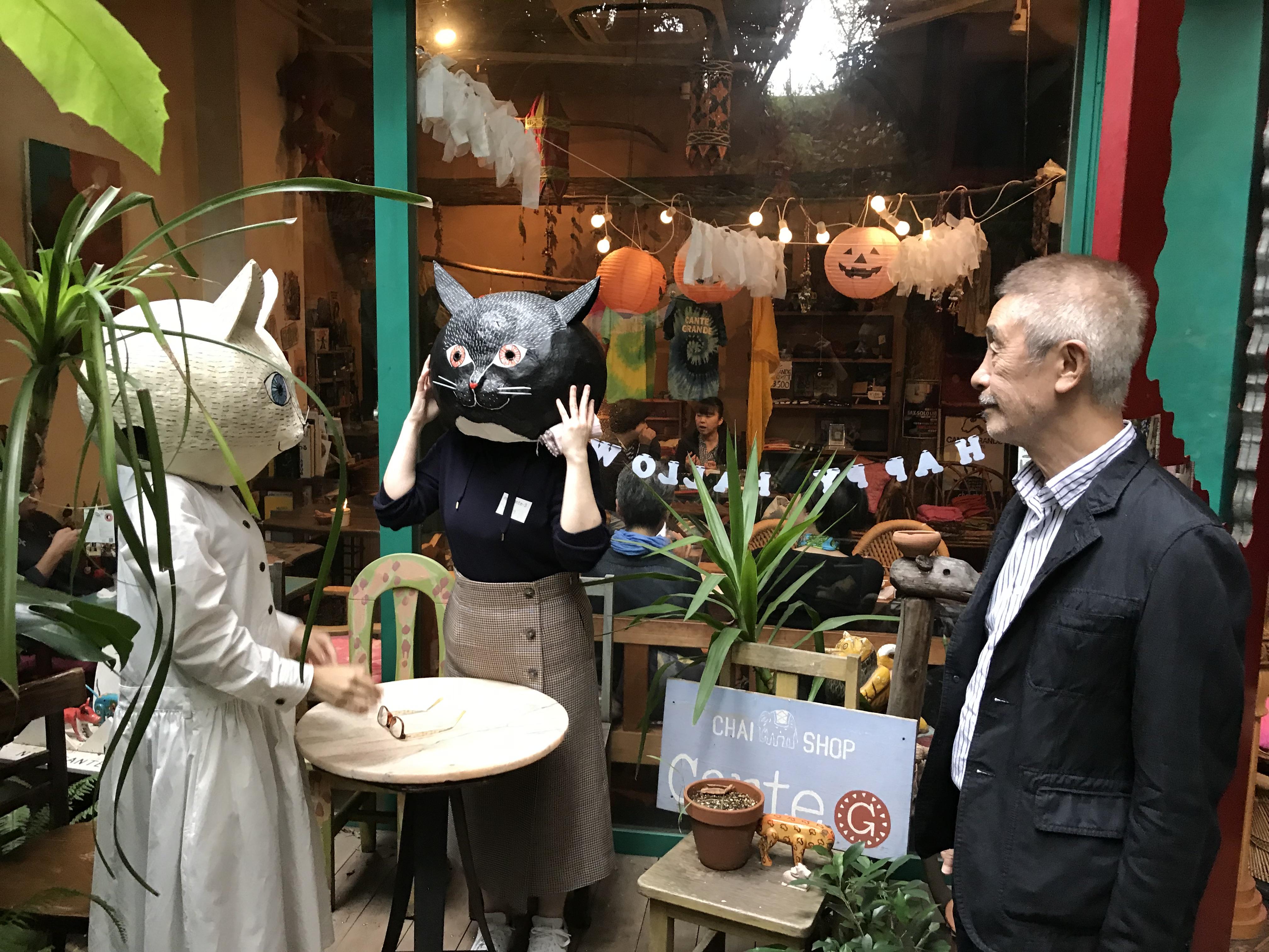 東京からきた作家猫さん
