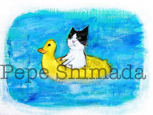 Duck rubber Cat.