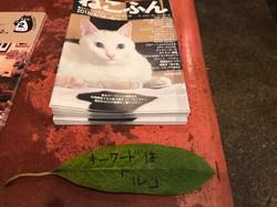 猫カンテはねこふん参加イベントです