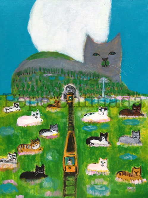"""""""Cat mountain and Cats Paradise"""""""