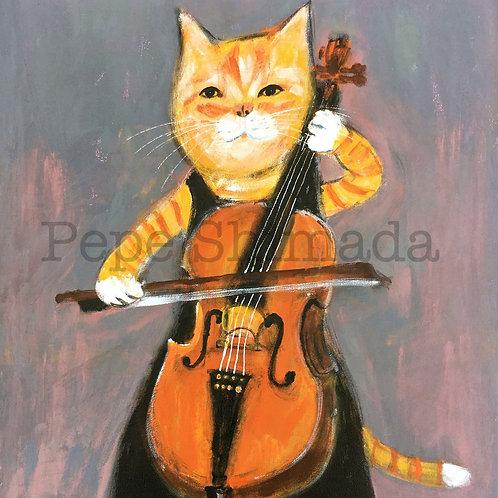 Cat Cellist