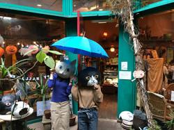 傘猫さん2