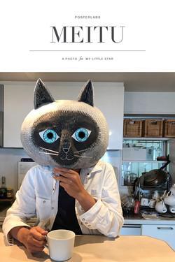 自宅で猫る