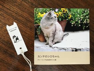 58/しおり事件