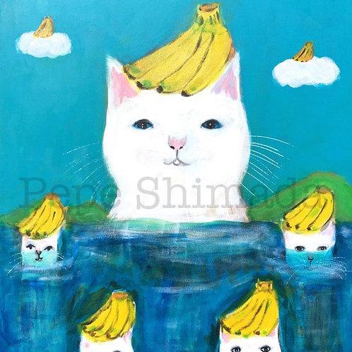 White Cat Banana island