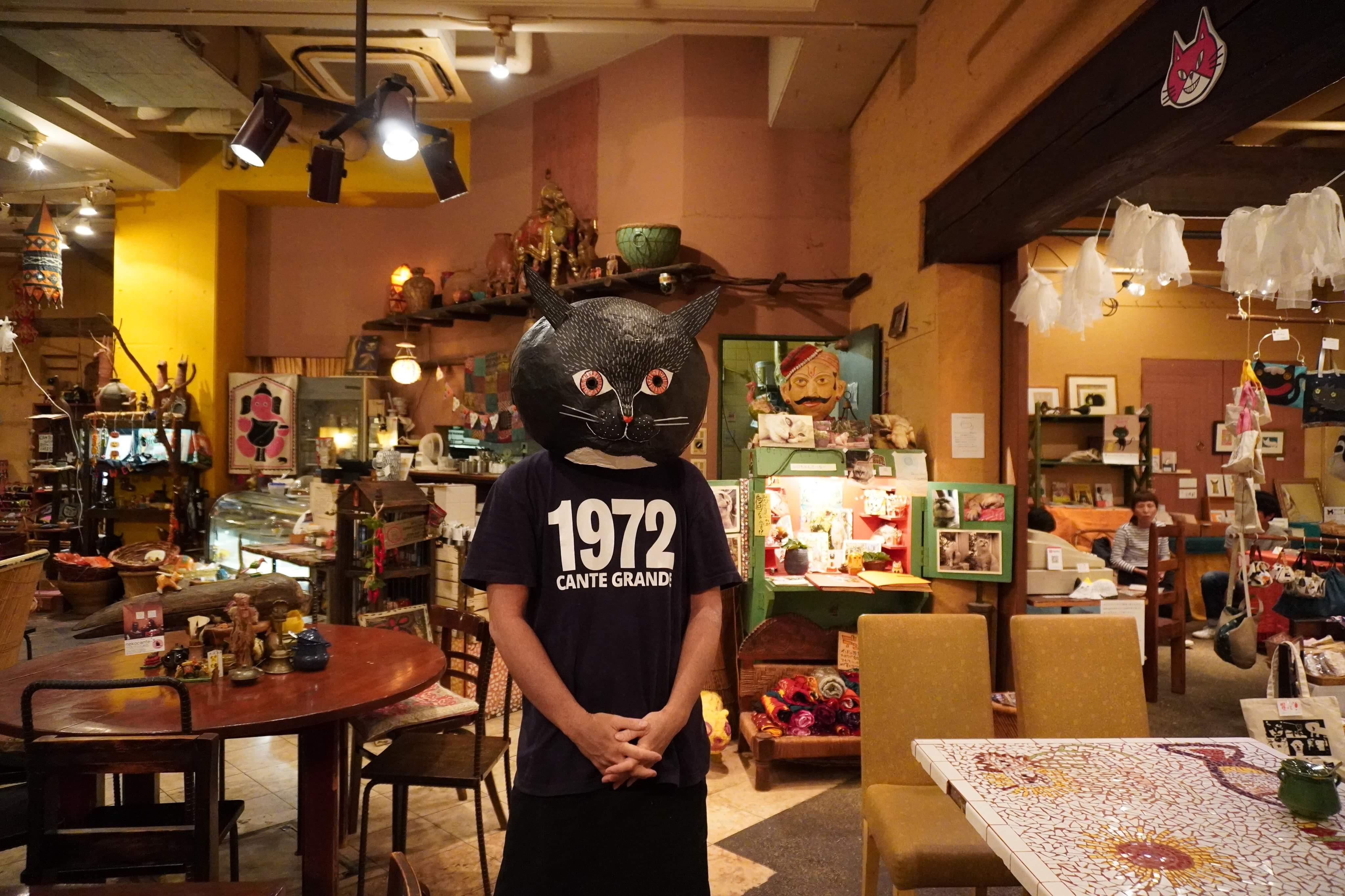 カンテのスタッフ猫