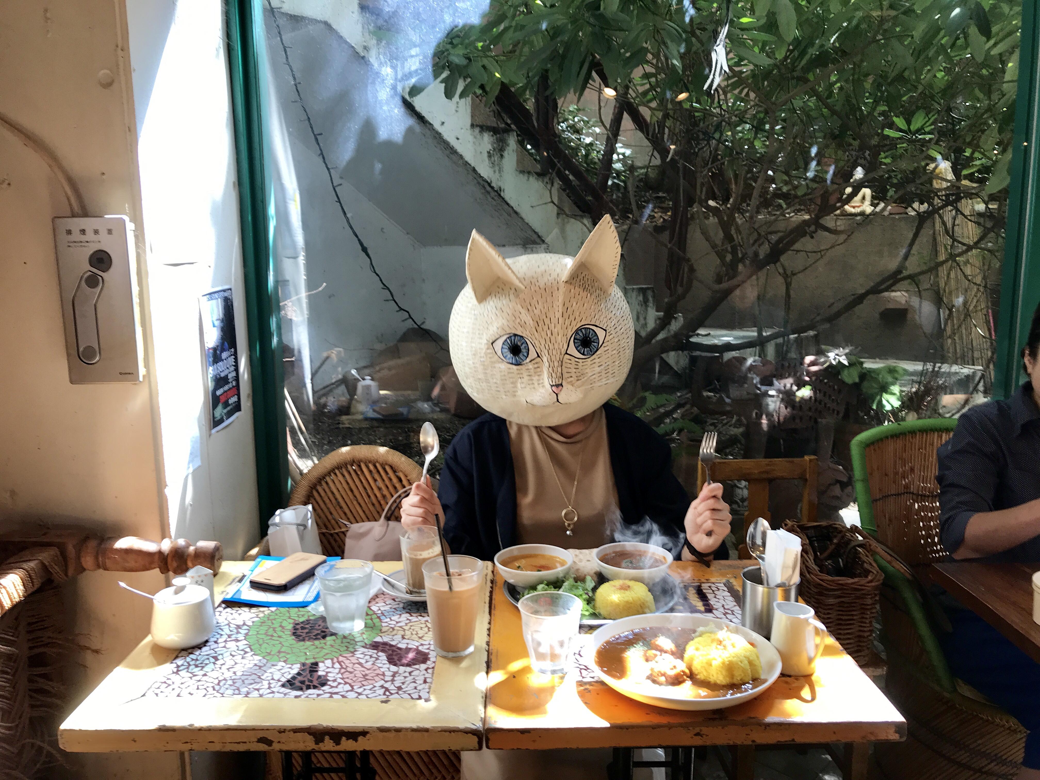 食いしん坊猫さん