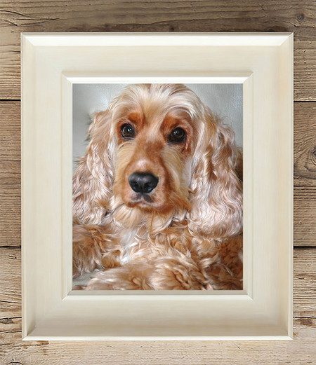 golden dog in photo frame Lancashire pet portraits